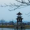奈良県 唐古鍵遺跡