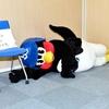 壁際に  寝返りをうった  つば九郎 先生