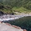 ④GW伊豆大島釣り遠征+【メメズ浜早朝釣り~】