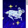 アストロオラクルカード 白羊宮について