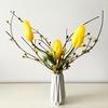 黄色い花の花木 ☆ サンシュユ