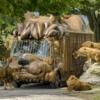 アメリカンサファリ|動物園 日記
