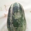 12日め-1 直売所で地元の野菜を買う!