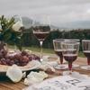 メルロー・ワインの特徴、味わいや香りを徹底解説!