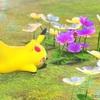 New ポケモンスナップ 感想18話『人間とポケモンが共生するフロレオ島!』