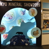 TOKYO MINERAL SHOW 2019 に行きました (^.^/