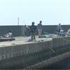 漁港の釣り師たち人気抜群今が旬のアオリイカ釣り