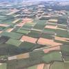 羽田空港から女満別空港へ、空港近く「朝日ヶ丘公園」のヒマワリ畑、広大な大地