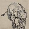 展示のお知らせ「299の森」& 動物の刺繍 逆立ちゾウさん