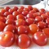 トマトの水分