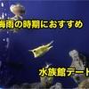 梅雨の時期には水族館デートがおすすめ!!!