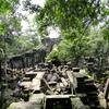 カンボジア 「ベンメリア」遺跡 放置された巨大遺跡(2/2) 「天空の城ラビュタ」のモデル?