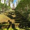 鎌倉駅から衣張山ハイキングコースに行ってみた。いろんな寺経由、釈迦堂切通、衣張山、杉本寺、鶴岡八幡宮。(神奈川県鎌倉市)
