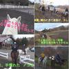 真冬の富士山麓 極寒の乗馬で、汗びっしょりだったね 🏇 ( ̄▽ ̄;)