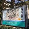 横浜市歴史博物館・横浜開港資料館『銭湯と横浜』から思いを馳せる綱島温泉
