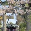 小田原散歩 -春のお祭り