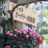 ソーシャルガーデナー俱楽部🌸広島植物公園