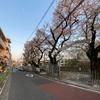 代々木上原不動産 賃貸 毎日速報!!4/5(日)