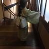 親子着物でお出かけ! 目黒雅叙園百段階段『猫都(ニャンと)のアイドル展』へ。