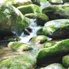 魂や宇宙の根源と一致した感覚〜波動が上がる瞑想