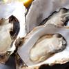 牡蠣の栄養と亜鉛の効果!カロリーは?