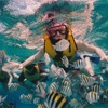 熱帯魚を買ったとき。酸素はどのぐらいもつの?よりもっと重要なこと。