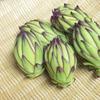 宮古島の珍野菜! ドラゴンフルーツのつぼみの天ぷら