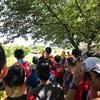 横浜月例マラソン初参加