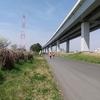 炎の30km走/荒川までサイクリング