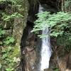 三滝山の尾根から湧き出る水音と深い緑に癒やされます。広島原爆死没者慰霊式並びに平和記念式において「献水」として採取されています。