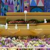 世界一しあわせな花壇