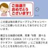 【当選品】3月11個目 ツルハ×味の素 EJOICA 2000円分 (26)