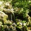 杜々の森湧水と十二山の神[長岡市西中野俣]【新潟県の名水・輝く名水】全国名水百選