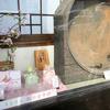 緑寿庵清水ヘ金平糖を買いに。早咲き桜をiPHoneXで撮ってみる。