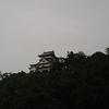 今日の犬山城は…『雨ザーザー降ってきて~🎵』