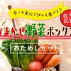 有機・低農薬野菜宅配のらでぃっしゅぼーや、在宅応援お試しセット販売