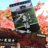 通天橋から眺めたい!「東福寺」で圧巻の紅葉に包まれる