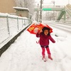大雪ですが