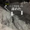 大雪2日目:もう止めることを諦めた