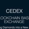 【仮想通貨】CEDEX(セデックス)のICO分析|IDEXとの提携など開発は順調の模様