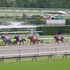 ダ1200m(2歳新馬戦)種牡馬別ランキング