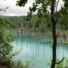 子連れ北海道旅行(2)青い池・望岳台@美瑛白金温泉