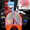Penyakit Paru Paru Penyebab Dan Cara Mengatasinya