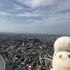 渋谷スカイ(渋谷スクランブルスクエア)