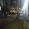 井の頭公園に、殻ノ少女の冬子の影を求めて行ってきました。