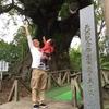 志布志にある樹齢1300年の大クスを見行きました!!