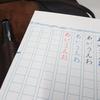 すべての作業を万年筆で行いたいので、LAMYをレッドインクで使い始めた