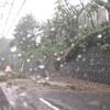 神奈川県大和市東名高速脇の斜面が崩れる土砂崩れ発生。場所はどこ?