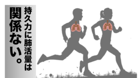 全身持久力に肺活量は関係ない?より高い持久力に関係することとは。
