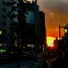 新宿の夕日と